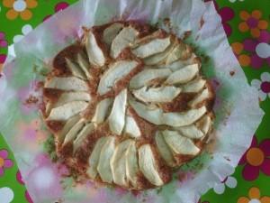 Gâteau aux pommes (23)_resultat_resultat
